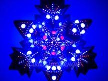 Макушка Полярная звезда